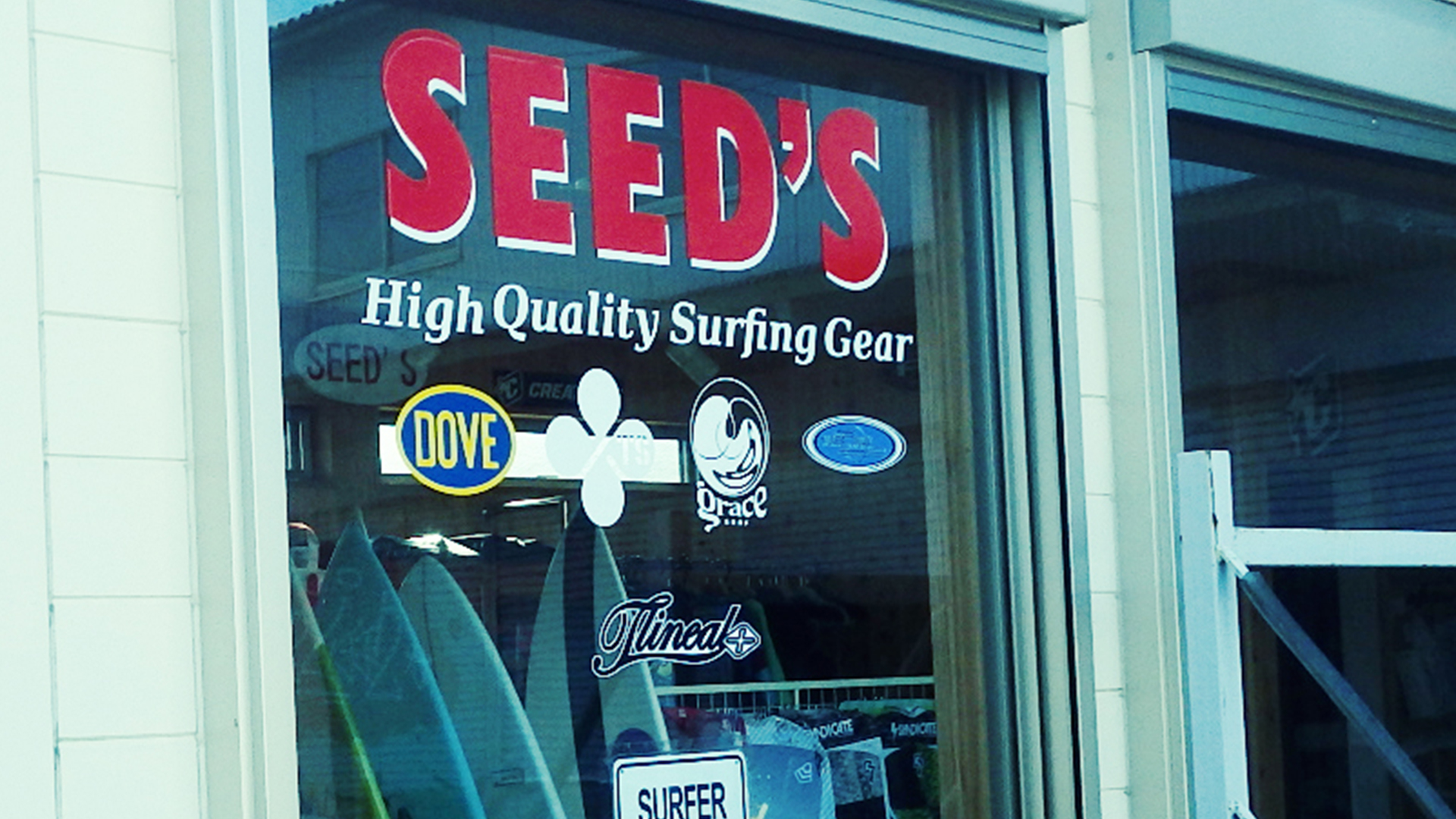 SEED'S